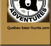 bear hunts, quebec bear hunts, bear hunting, bear hunting quebec, big bear hunts claude turcotte