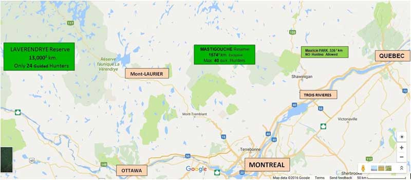 Quebec bear hunting Outfitter, Canada bear hunting guide